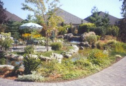 Japanese Garden at the back of the Village Centre